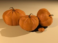pumpkins fall halloween 3d model