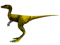 compsognathus dinosaur raptor 3d obj