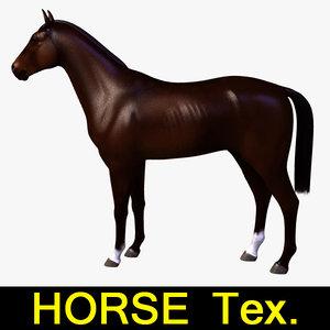 3d 3ds horse mammal
