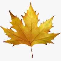 realistic autumn maple leaf 3d max
