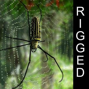 golden silk spider 3d model