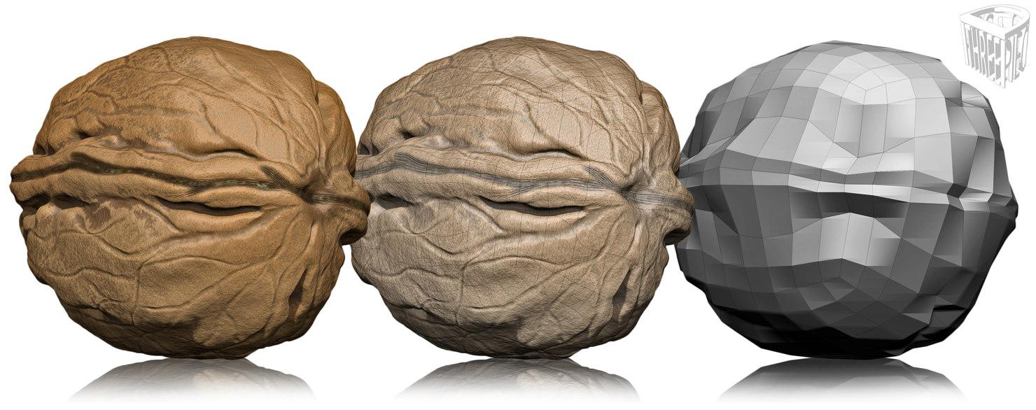 3d nut walnut