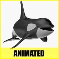 3d orca killer whale animation model