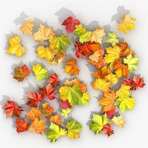3d model dry maple leaves