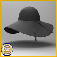 3d model hat ladies floppy