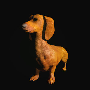 3d dachshund dog model