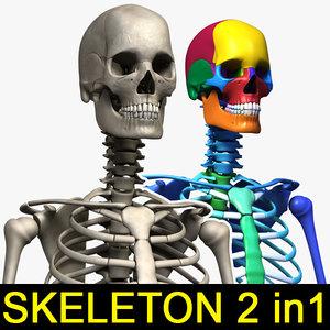 human skeletons 2 1 3ds