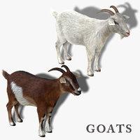 goats fur 3d obj