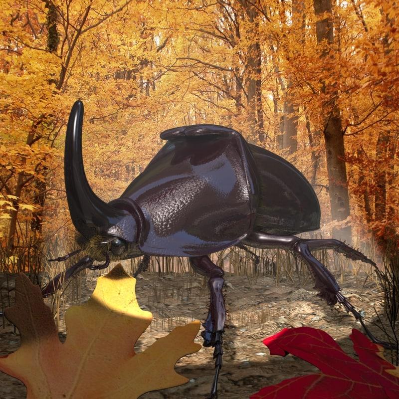 rhinoceros beetle rigged 3d model