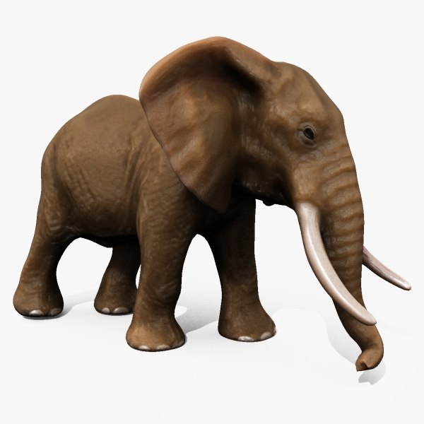 3d model elephant animating