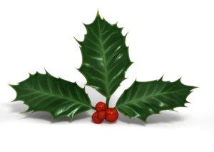 xsi christmas leaves berries