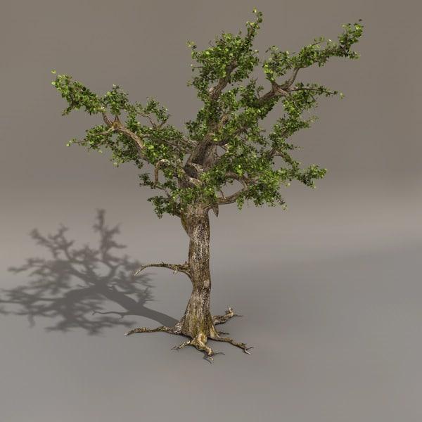 3d scary tree leaf model