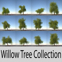max willow trees