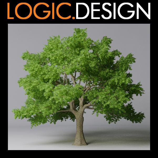 3d model tree maple