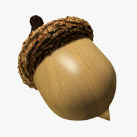 acorn max