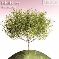 tree high-poly billboard 3d x