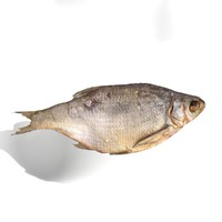 3d bream fish