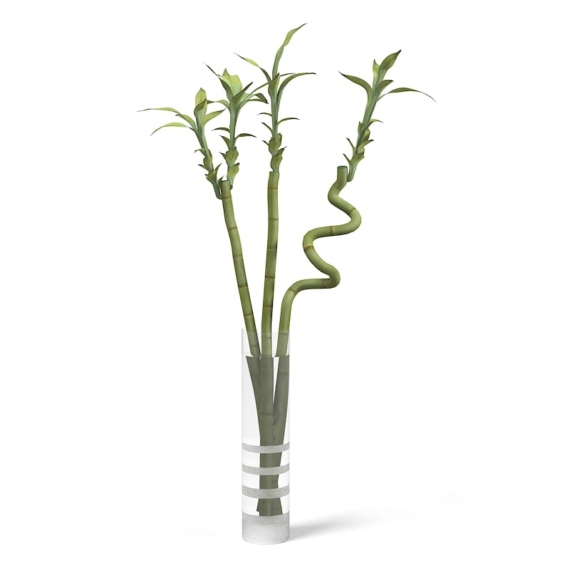 3ds Max Ikea Lucky Bamboo