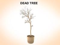 maya dead tree
