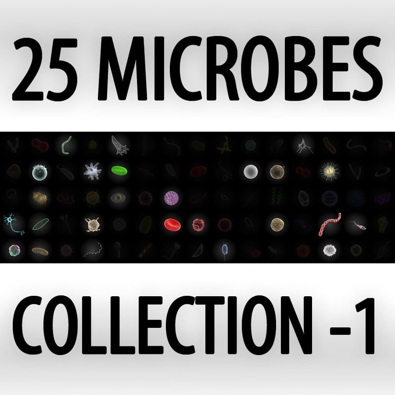 3d model 25 microbes micro sets