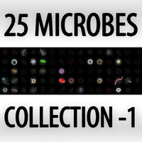 Collection of 25 microbes - set 1