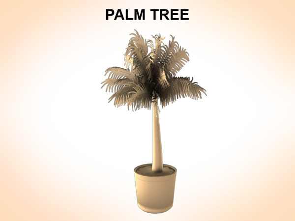 palms plant 3d model