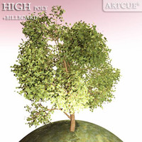 3d tree high-poly billboard