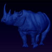 Black Rhino Stare bas relief