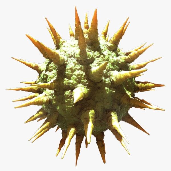 hepatitis c virus 3d max