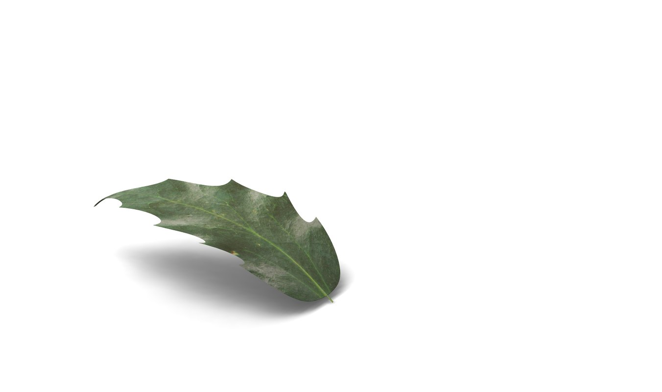 3d model tree flower