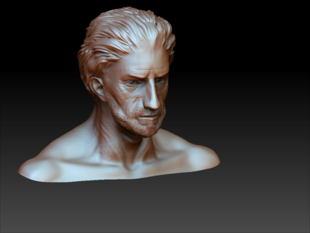 zbrush human male head 3d model