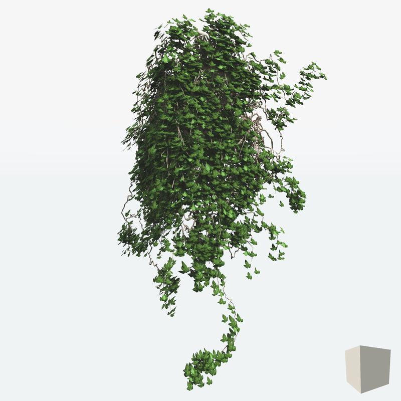 3d ivies plant