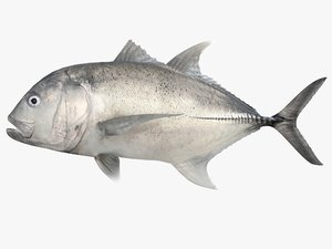 giant trevally 3d 3ds