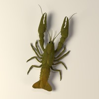 fish crayfish cray 3ds