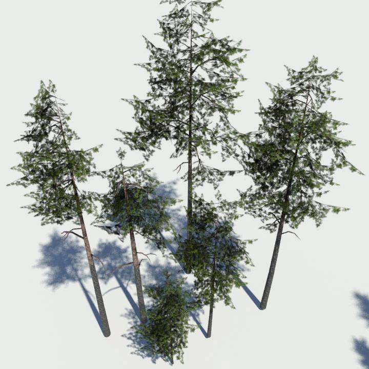 3d grim designs pine pack model
