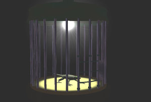 shonga cage 3d lwo