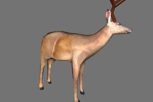 3ds deer games base