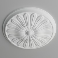 max ceiling medallion