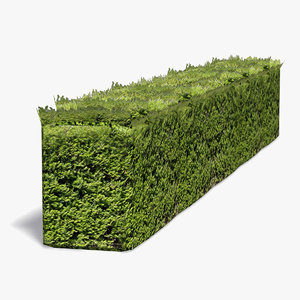 3d model of hedgerow hedge