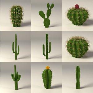 3d cactuses