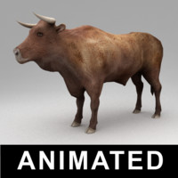 Animated bull