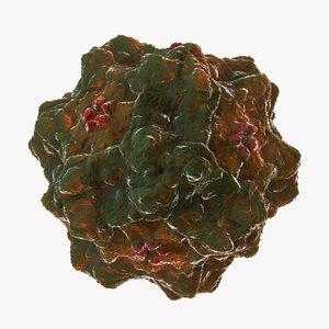 3d panleukopenia virus model