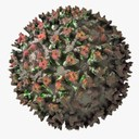 Aquareovirus 3D models