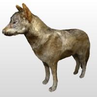 wolf 3d blend