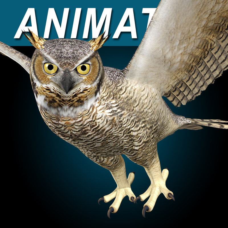 3ds max great horned owl flying