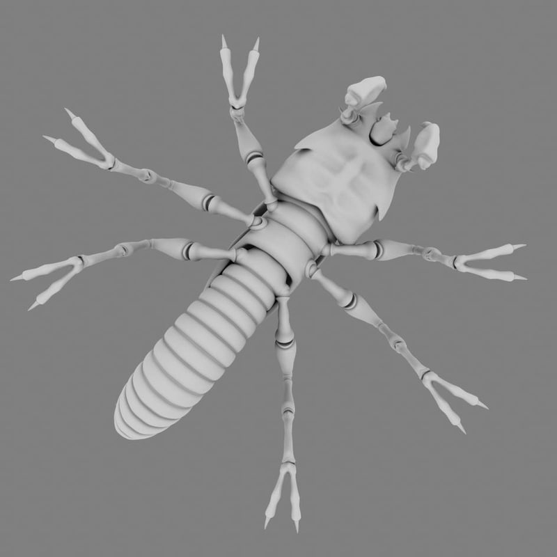 3d termite