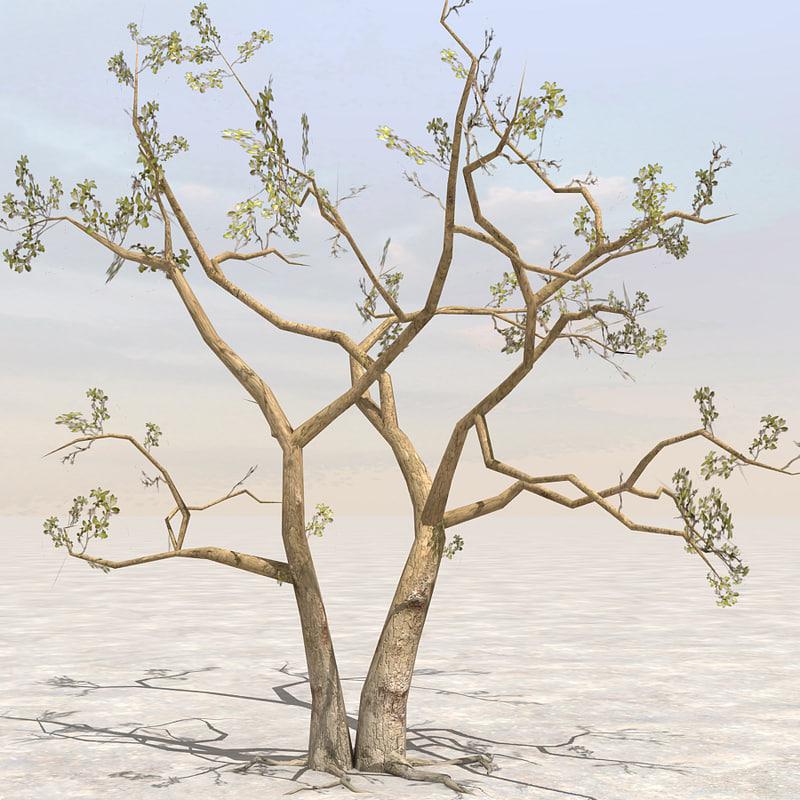 3dsmax tree afghanistan 02