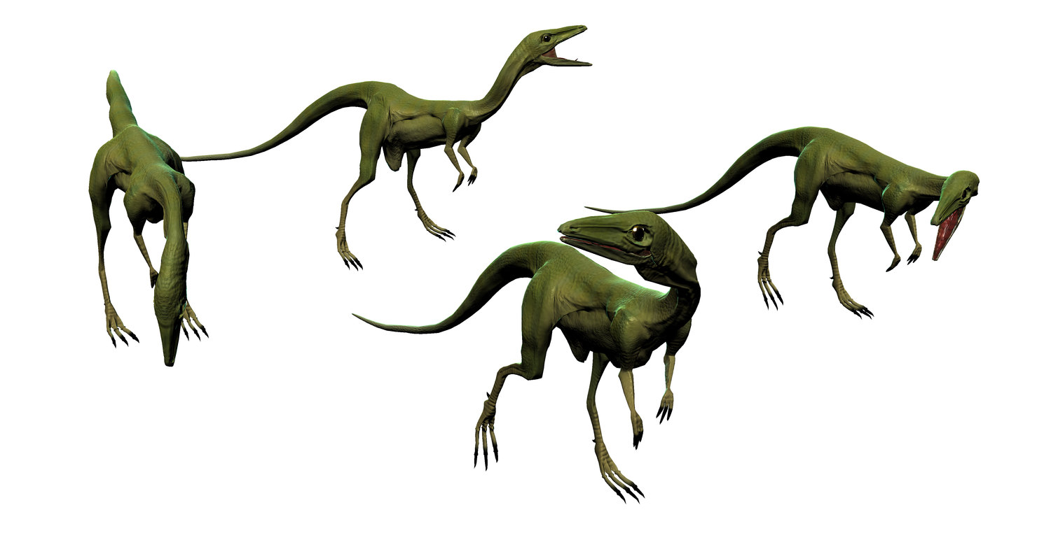 compsognathus compy dinosaur 3d model