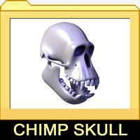 3ds realistic chimpanzee skull