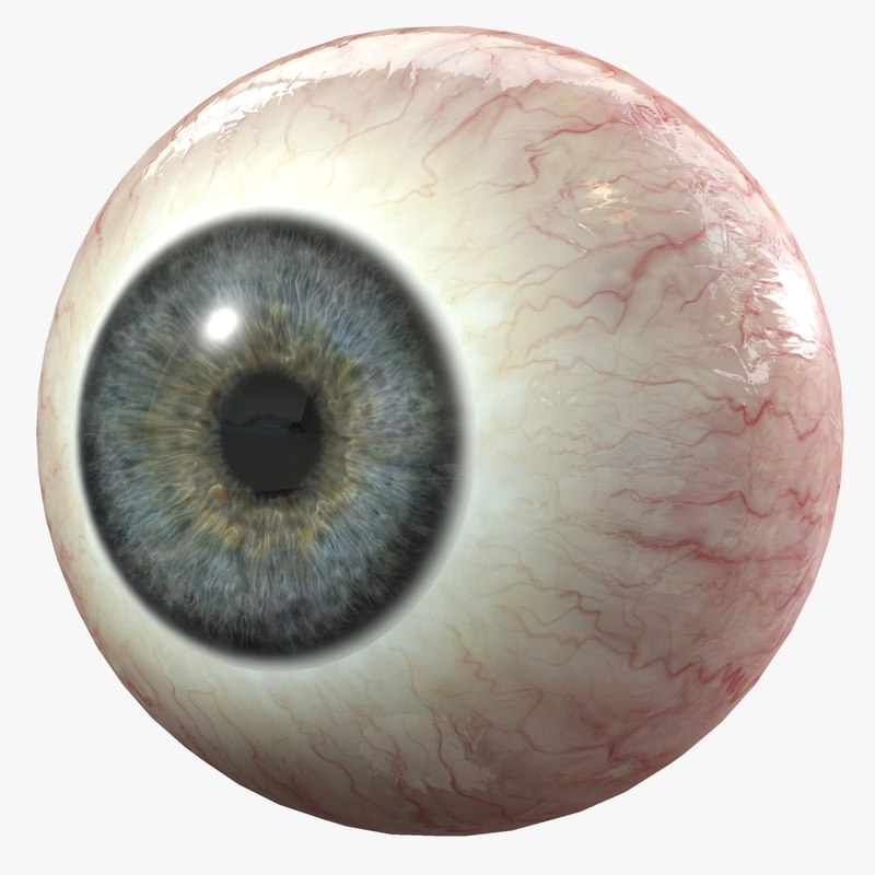 Eye_4_.jpg7406d7cb-52c1-4a1b-a64f-4b80fb